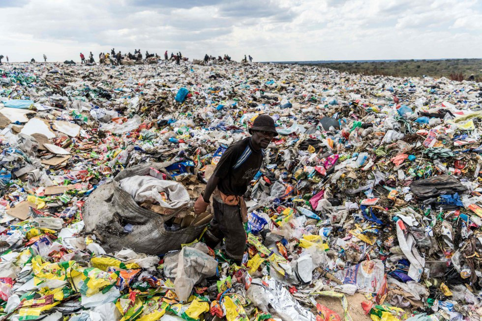 Día Mundial del Medio Ambiente 2018